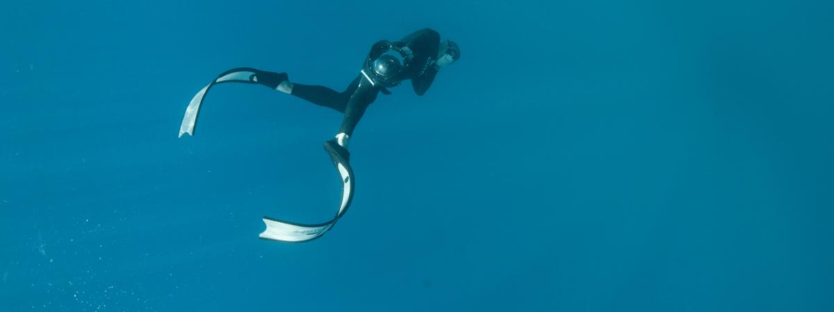 Freedive Photography
